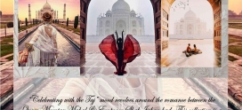Celebrate with the Taj – Mood Board