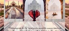 Celebrate with the Taj – Mood Board